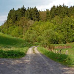 Wanderweg in Beddelhausen